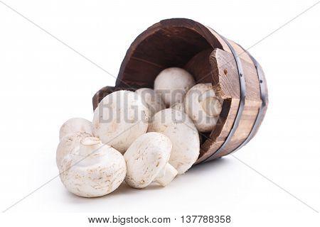 Wooden Vat Mushrooms