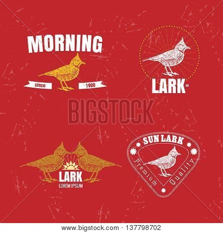 Vector colorful set with desert Crested lark bird. The lark bird as main element of logotypes on red background. Engraves vector design graphic element emblem logo sign identity logotype
