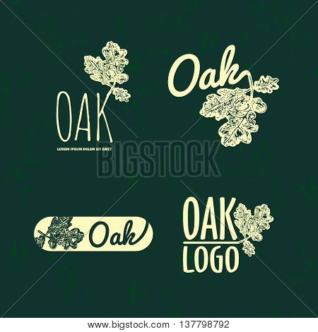 Vector colorful set with oak leaf and acorn. The oak leaf as main element of logotypes on dark green background. Engraves vector design graphic element emblem logo sign identity logotype