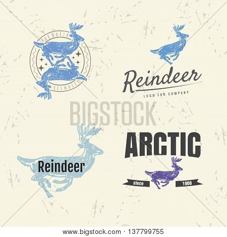 Vector colorful set with reindeer. The reindeer as main element of logotypes on beige background. Engraves vector design graphic element emblem logo sign identity logotype