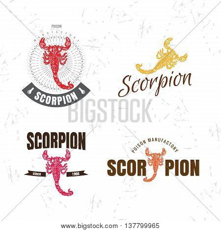 Vector colorful set with scorpion. The scorpion as main element of logotypes on white background. Engraves vector design graphic element emblem logo sign identity logotype