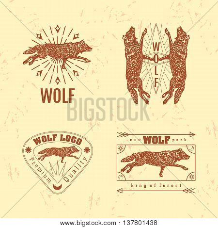 Vector colorful set with forest wolf. The wolf as main element of logotypes on beige background. Engraves vector design graphic element emblem logo sign identity logotype
