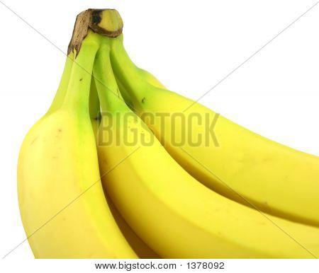 Bananas_3