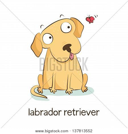 Labrador Retriever. Dog Character Isolated On White