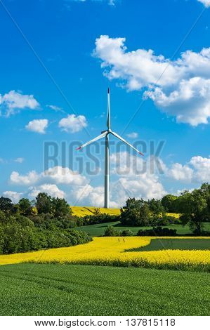 Wind Turbine In A Rapeseed Field