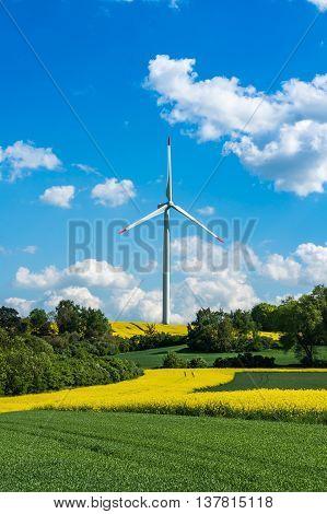 Wind Turbine In A Rapeseed Field