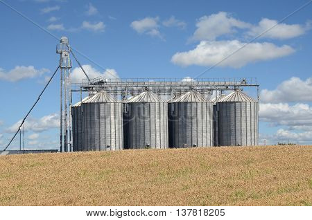 Wheat field and silos, farming in eastern Europe