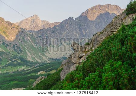 Summer mountain landscape. Mountain rocks and peaks.