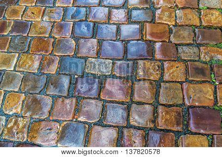 Cobblestone Pavement After The Rain