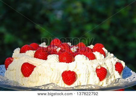 Delicious strawberry cake sunlit outdoors in a garden