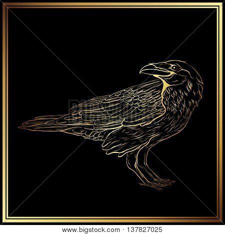 Higlly detailed gold raven sketch on black background