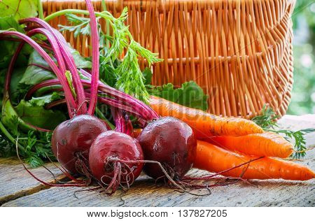 Young organic beetroots and carrots with leaves on a wooden table. Vegetables from the garden