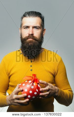 handsome bearded man with long lush beard and moustache on serious face holding gift box in yellow shirt in studio on grey background