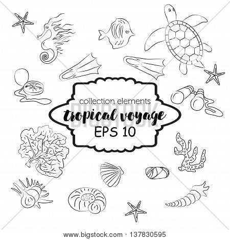 Collection with marine and tourism outline elements-water turtle, jellyfish, fish, corals, binoculars, seahorse, flippers and seashell. Vector sea fauna design. Adventure tropical concept