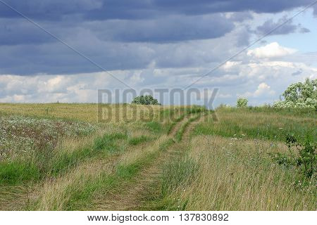Rural landscape. Thumb wheel road among the dense green grass field. Over the road storm clouds are gathering.