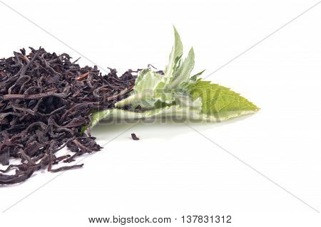 Black tea with the fresh mint leaves