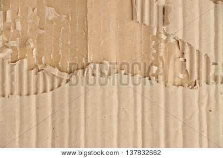 Wrinkled and torn brown corrugated cardboard with all the details