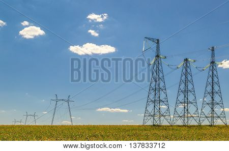 High voltage electric line in a field of sunflowers