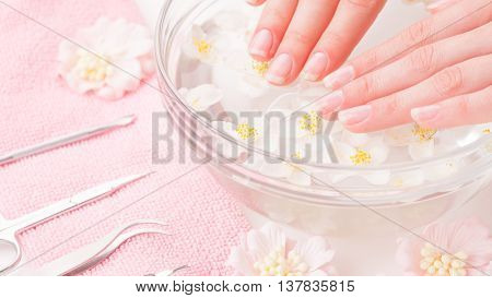 Woman hands in tray with water on a white background