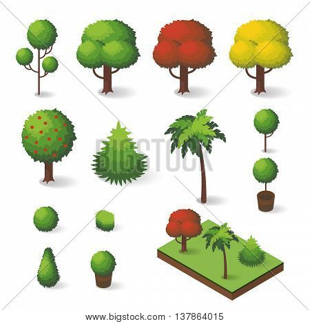 Vector set of isometric various trees: fir-tree apple tree palm tree.