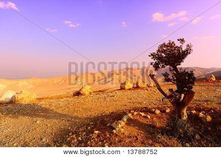 Judea Mountains