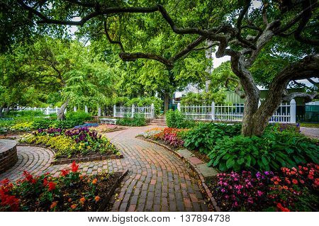 Gardens At Prescott Park, In Portsmouth, New Hampshire.