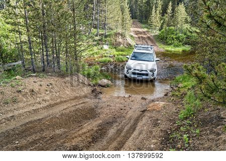 RED FEATHER LAKES, CO, USA - JUNE 3, 2016: Toyota 4Runner SUV (2016 Trail edition) crossing a mountain stream (Sand Creek Road) in Colorado's Rocky Mountains