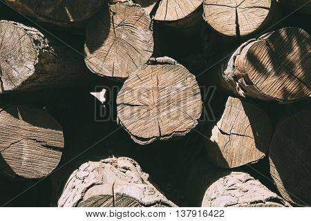 close-up of chopped tree trunks in sunlight. Useful as a background. Copy space area