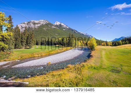 Picturesque valley in Banff National Park. Beneaped autumn stream with a pebbly bottom flows among fields and pine forests