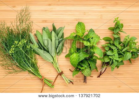 Various Aromatic Herbs And Spices From Garden  Green Mint ,fennel ,rosemary,oregano, Sage,lemon Thym