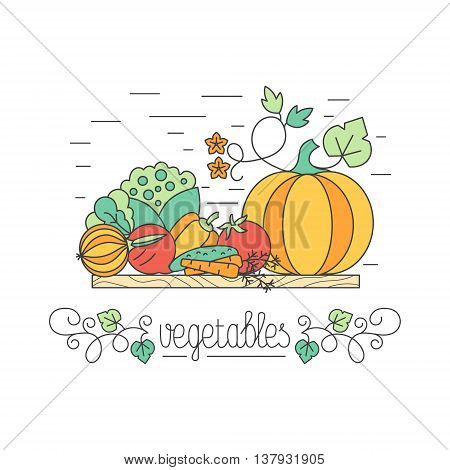 Autumn harvest vegetables concept each one is isolated for easy use. Healthy lifestyle or diet design element.