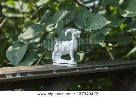 white porcelian goat grey old board in garden