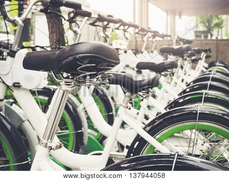 Bicycle rental Row of Bikes Park outdoor Urban city Public Facility