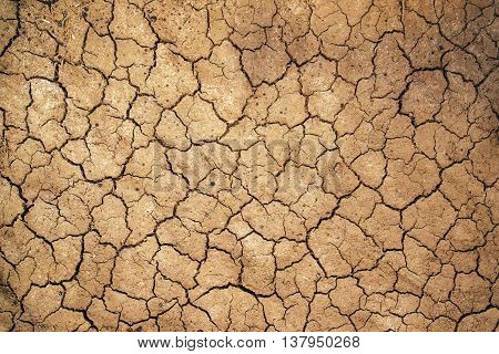 Mud cracks in dry earth texture arable soil during dry season in nature as weather or climate change background