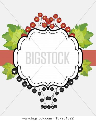Vector hand drawn label currants. Red black currant berries menu circle design recipe place text inscription frame.
