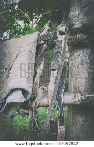 Old Village Style. Harness On The Old Fence.