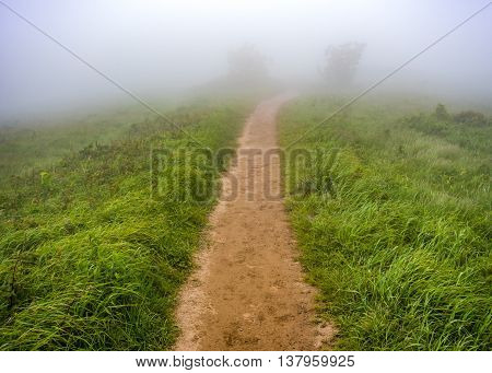 Trail Disappears Into the Fog on a grassy mountain top