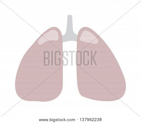 Human lungs icon vector illustration. Health care lungs icon breathe shape biology, anatomy organ. Respiratory pulmonary lungs icon bronchial organ design science healthcare element.