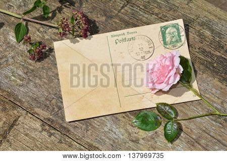 old blank vintage postcard with old stamp is on old wood with pink rose