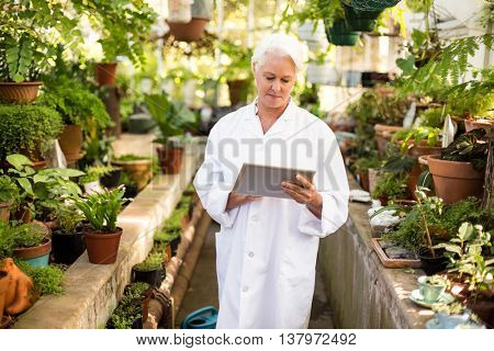 Female scientist using digital tablet while standing amidst plants at greenhouse