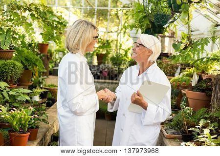 Female scientists greeting each other amidst plants at greenhouse