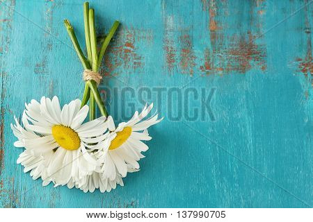 White chamomile on wooden table