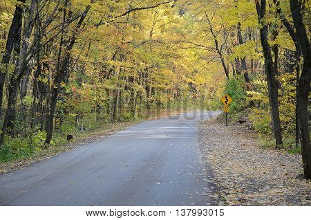 Autumn Colors Along a Rural Road in Devils Lake State Park near Baraboo Wisconsin