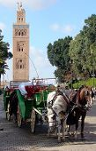 Marrakech - Horsedrawn Carriage