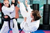 pic of karate-do  - People in a gym in martial arts training exercising Taekwondo - JPG