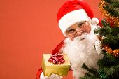 picture of santa-claus  - Photo of happy Santa Claus with small giftbox looking at camera out of decorated xmas tree - JPG