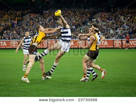 MELBOURNE - SEPTEMBER 9 : Brad Ottens (C) wins a ruck contest during Geelong's win over Hawthorn - September 9, 2011 in Melbourne, Australia.