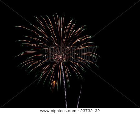 Palmetto fireworks