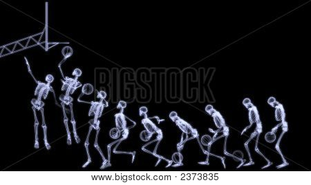 Xray Of Human Skeleton Playing Basketball