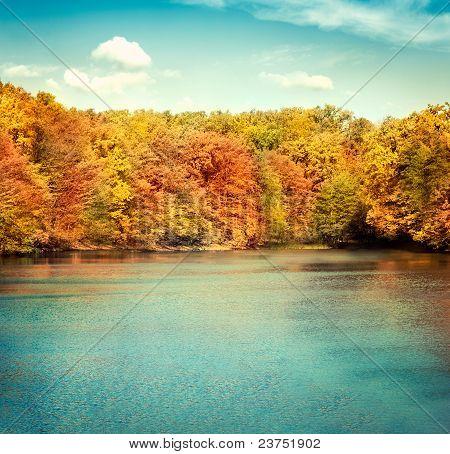 Lake Nature Landscape